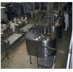 Complete Cheese production line