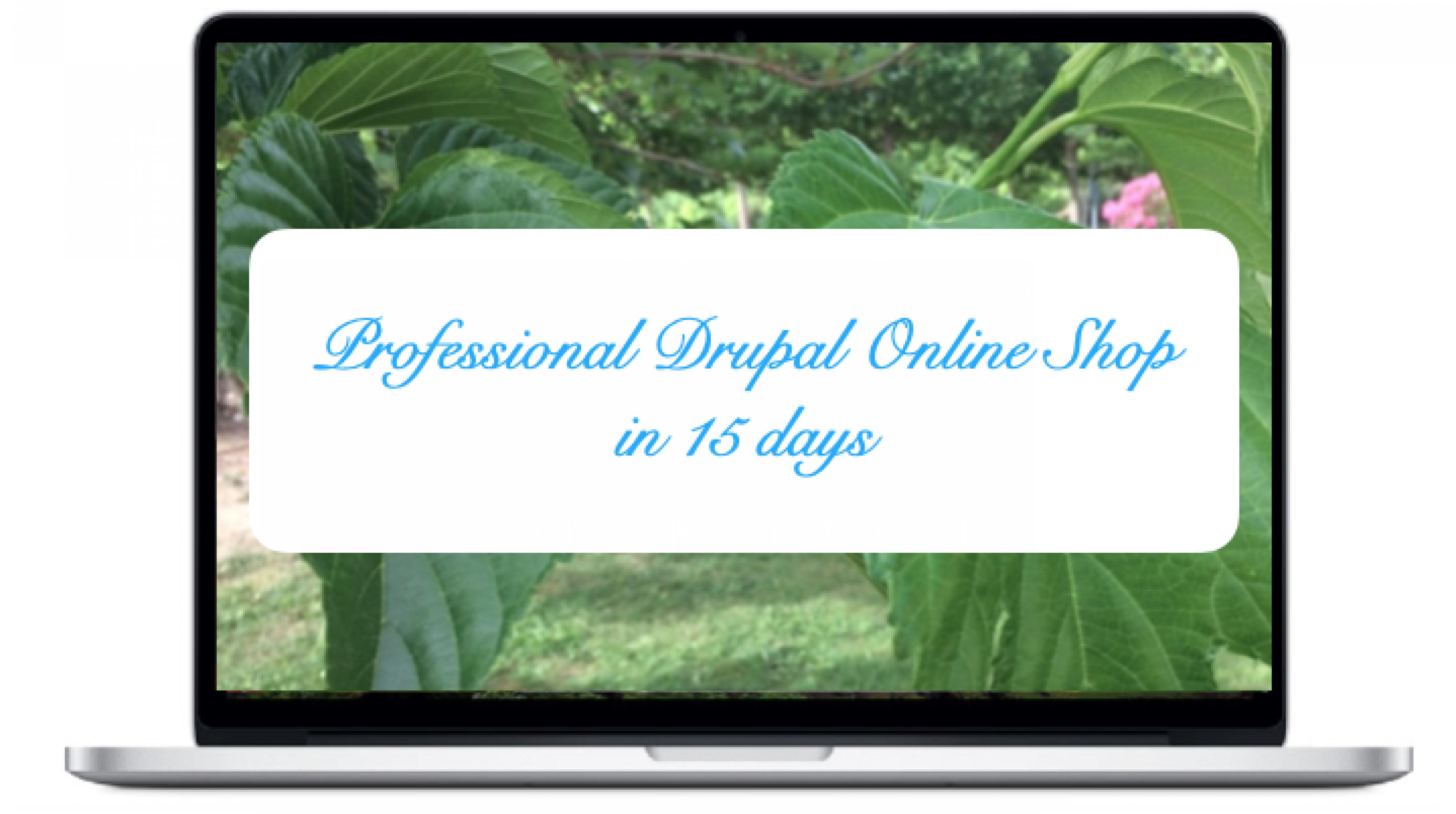 professional-drupal-online-shop-in-15-days.png