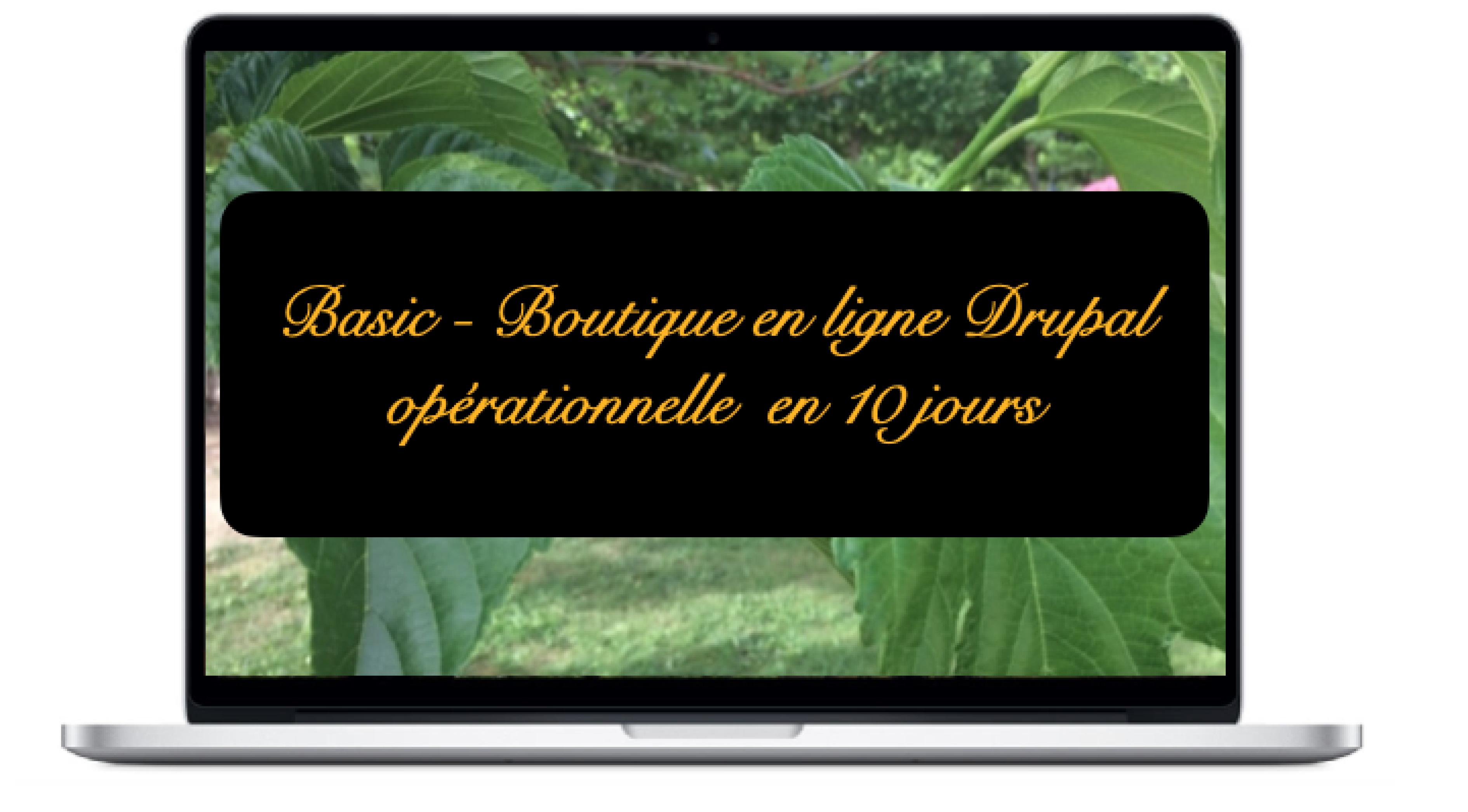 basic-boutique-en-ligne-drupal-operationnelle-en-10-jours
