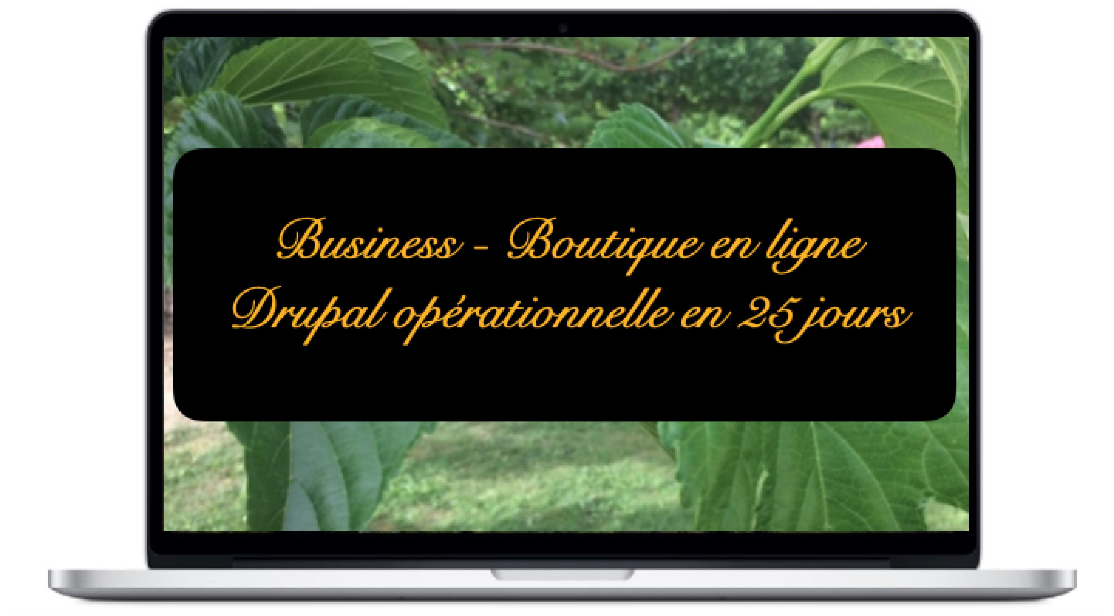 business-boutique-en-ligne-drupal-operationnelle-en-25-jours_0