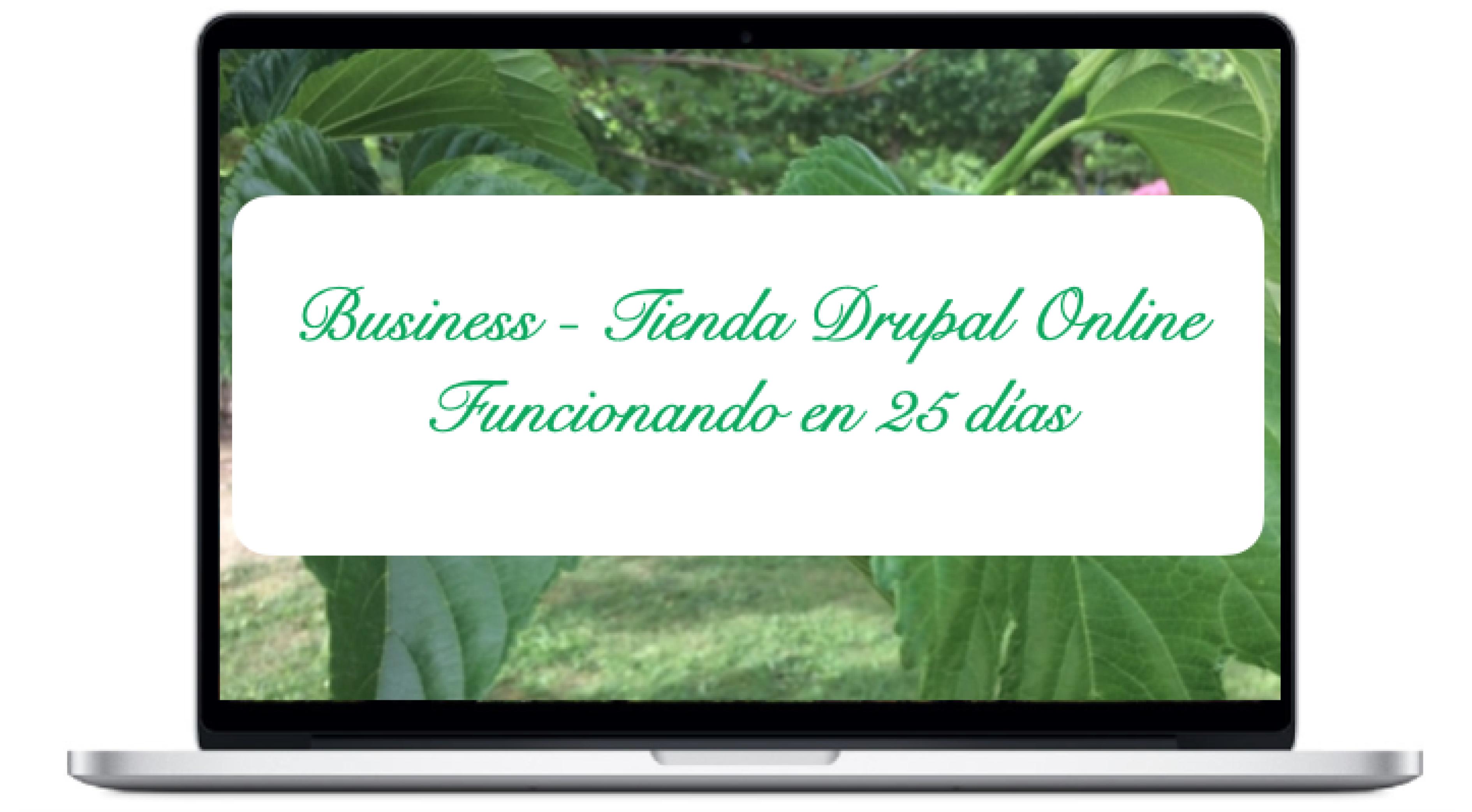 business-tienda-drupal-online-funcionando-en-25-dias