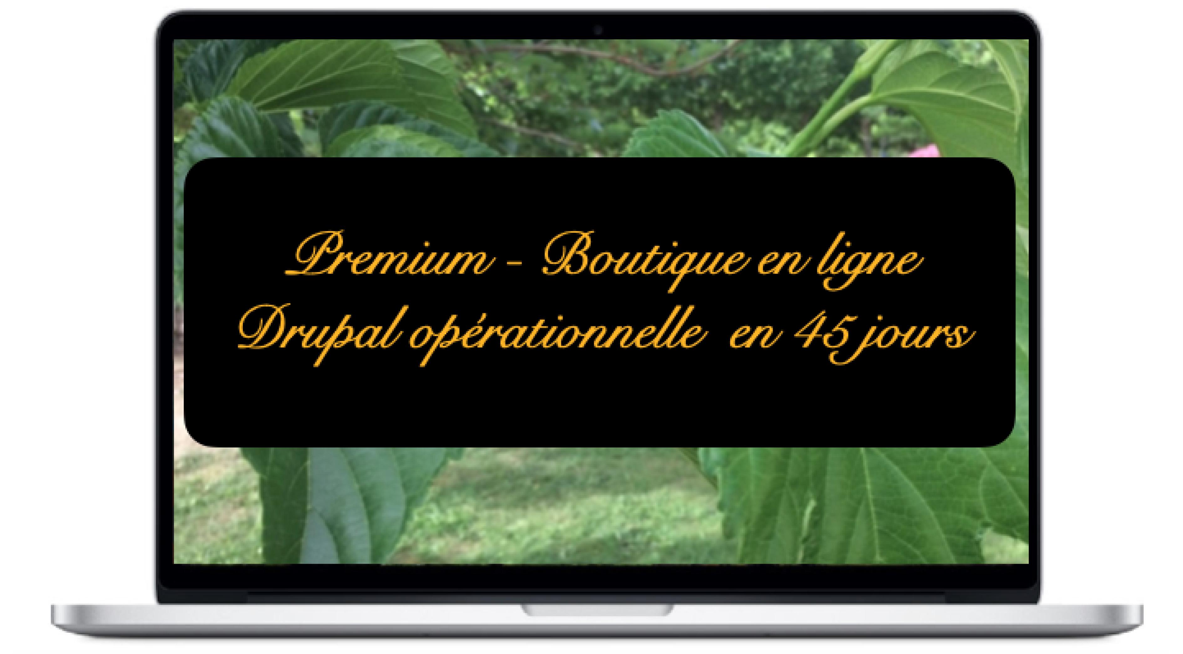 premium-boutique-en-ligne-drupal-operationnelle-en-45-jours_0