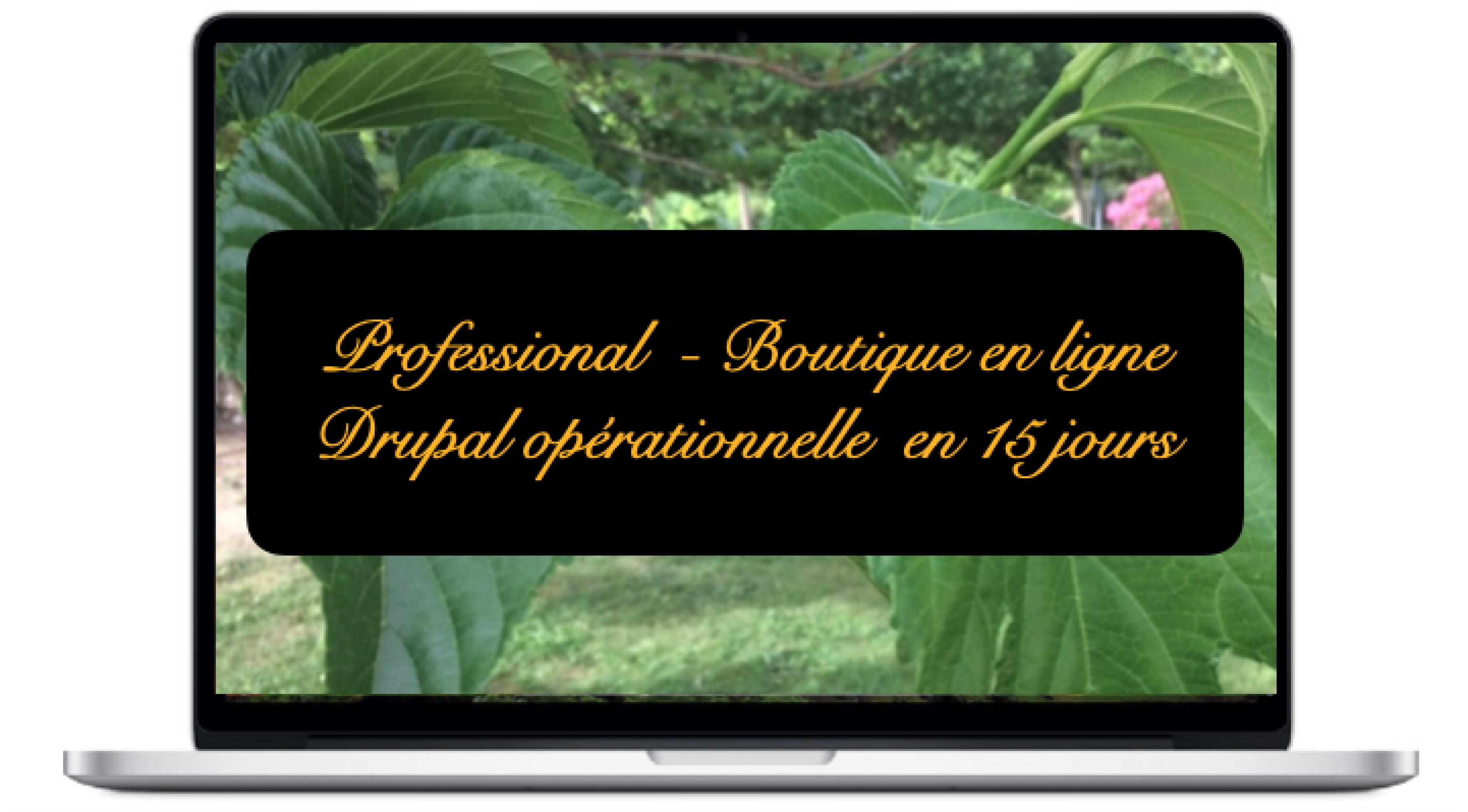 professional-boutique-en-ligne-drupal-operationnelle-en-15-jours_0.png