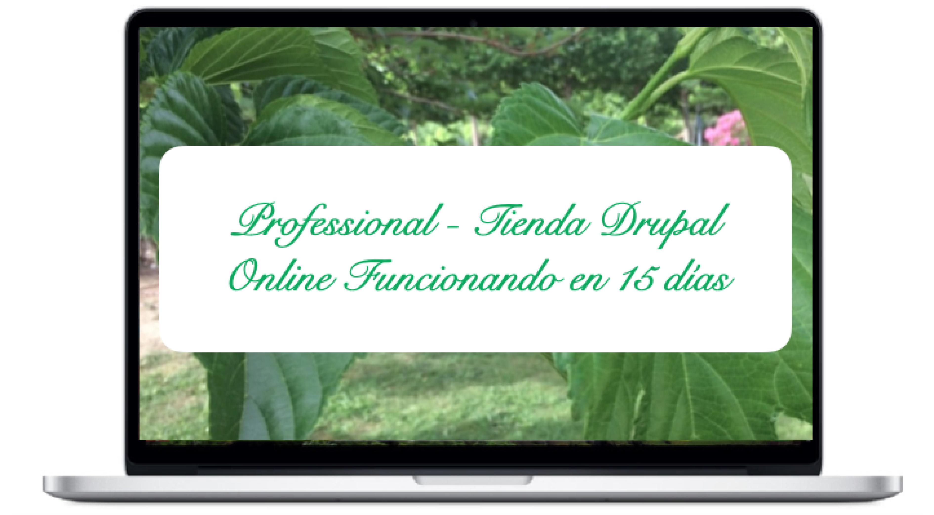 professional-tienda-drupal-online-funcionando-en-15-dias_0