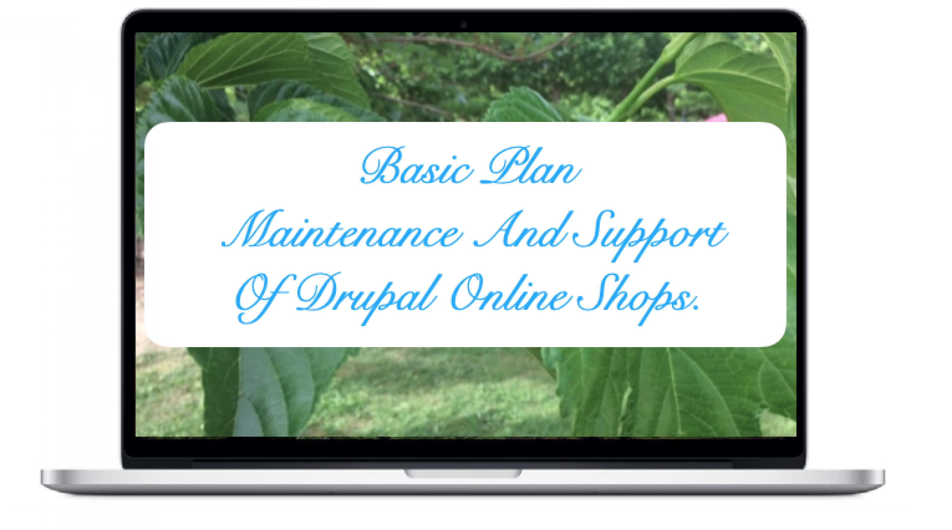 basic-maintenance-and-support-drupal-online-shops_11