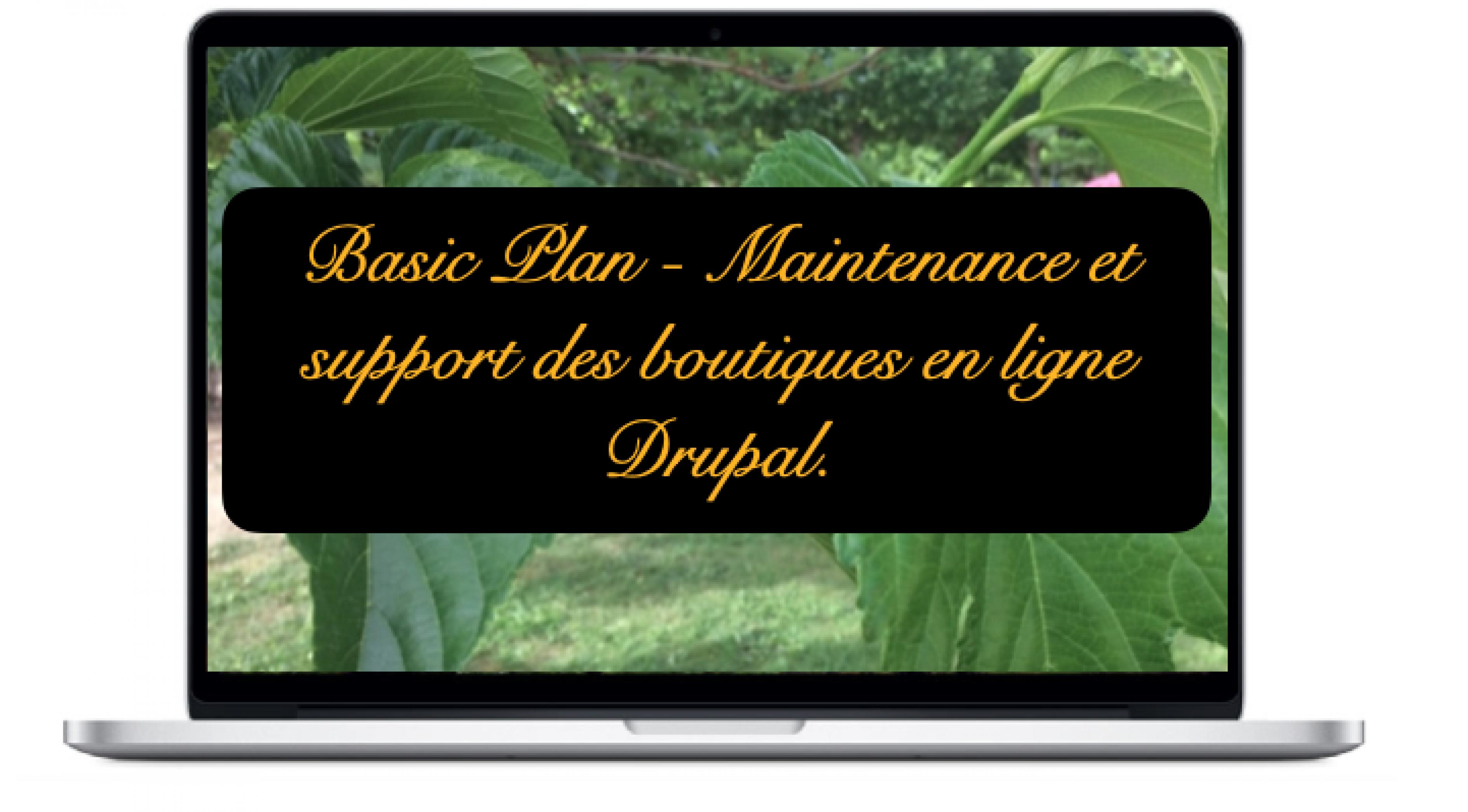 basic-maintenance-et-support-des-boutiques-en-ligne-drupal.png