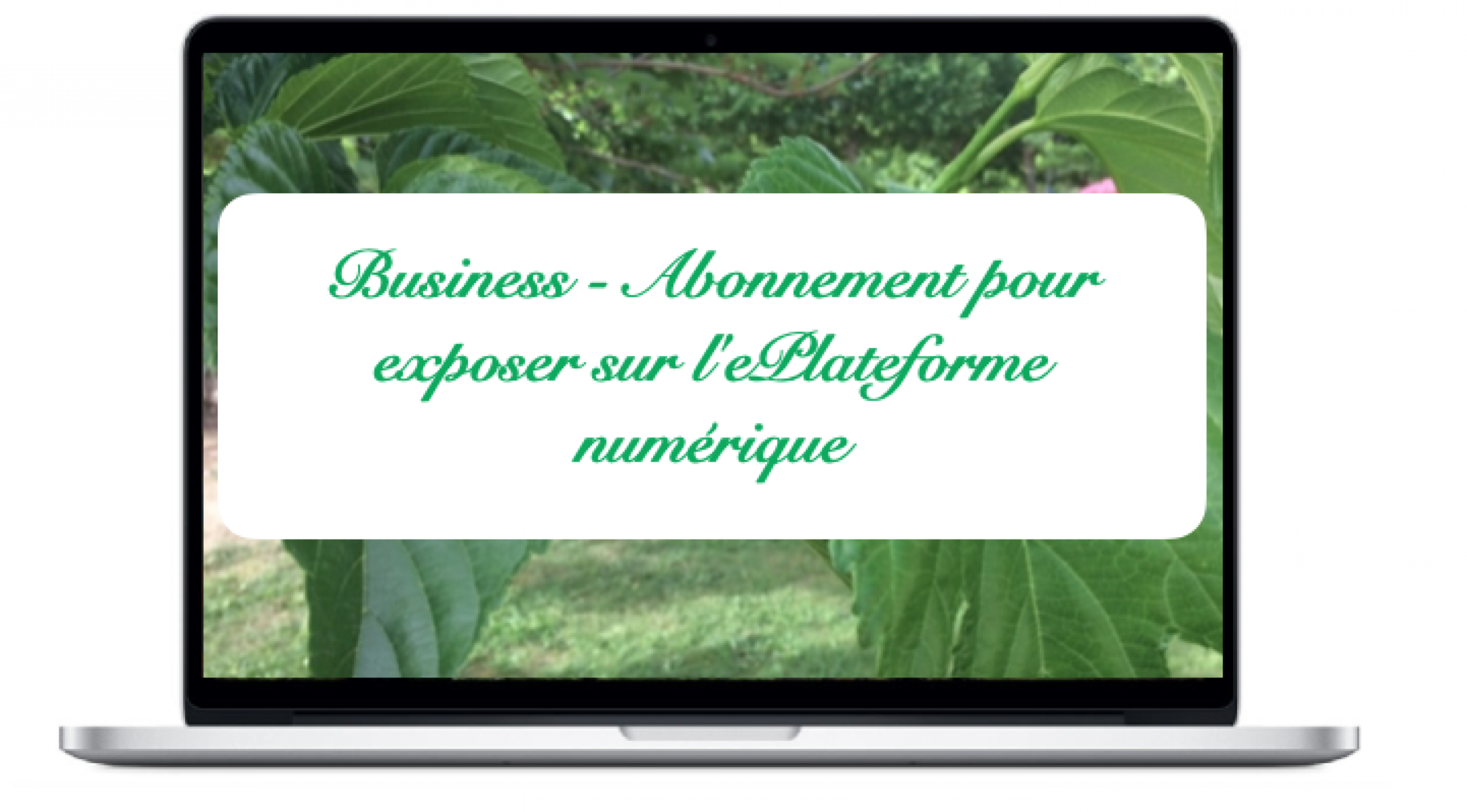 business-abonnement-pour-exposer-sur-leplateforme-numerique
