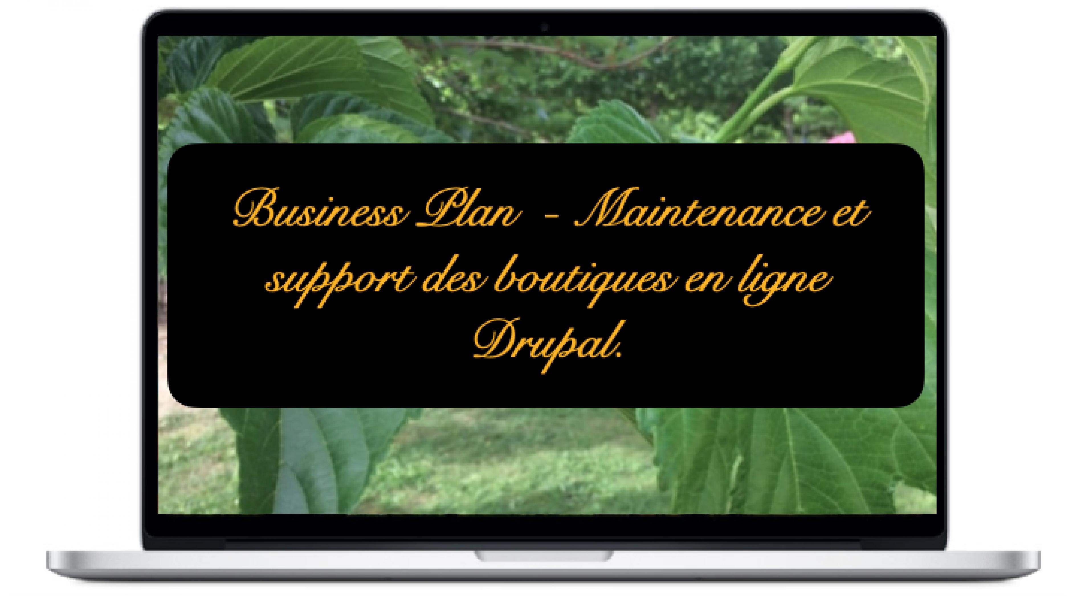 business-maintenance-et-support-des-boutiques-en-ligne-drupal_2