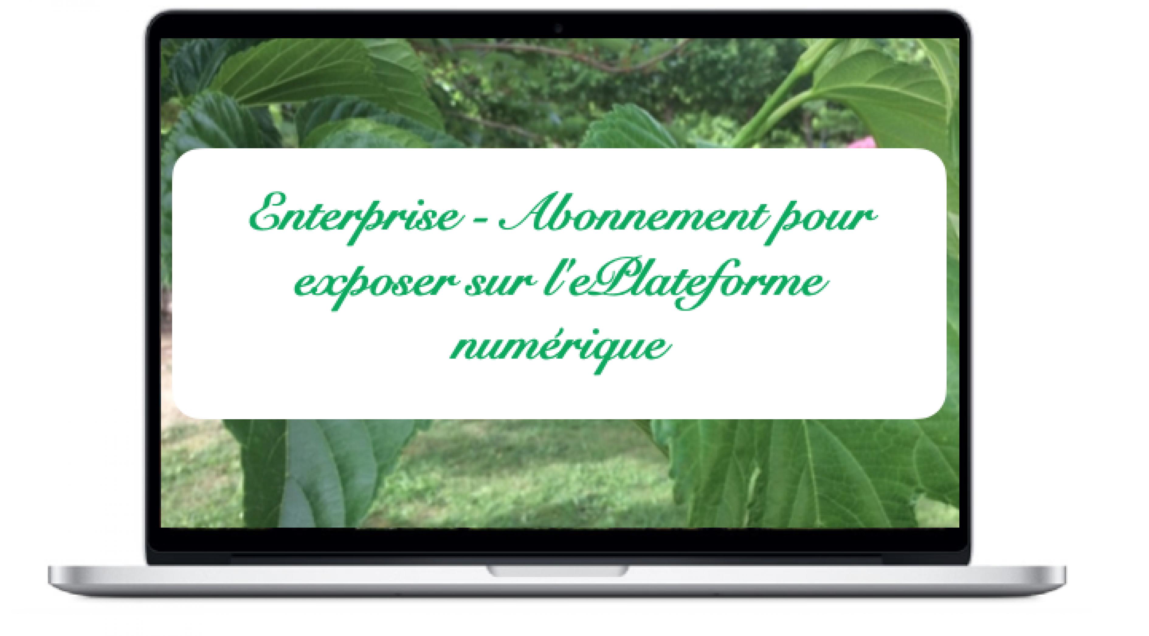 enterprise-abonnement-pour-exposer-sur-leplateforme-numerique