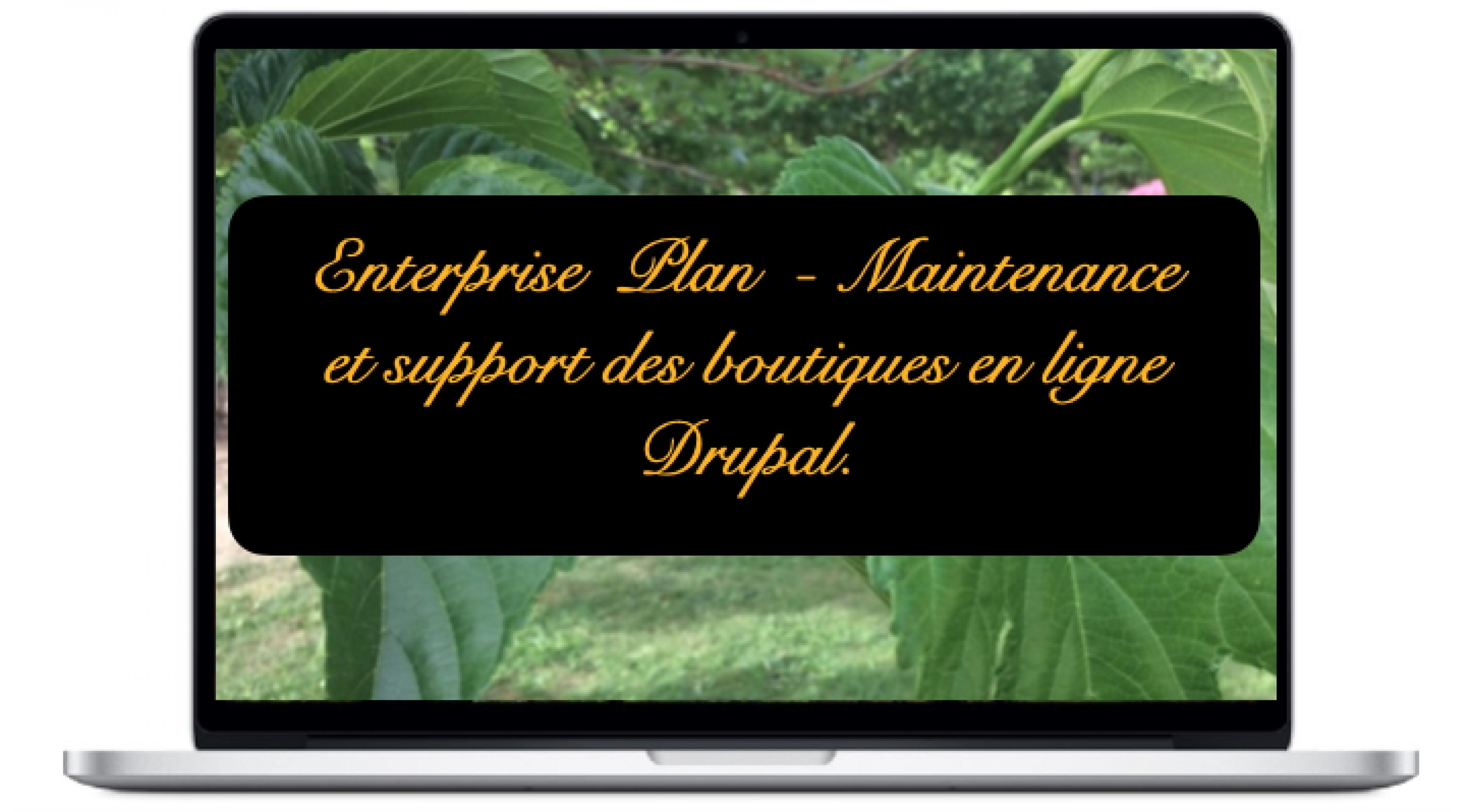 enterprise-maintenance-et-support-des-boutiques-en-ligne-drupal