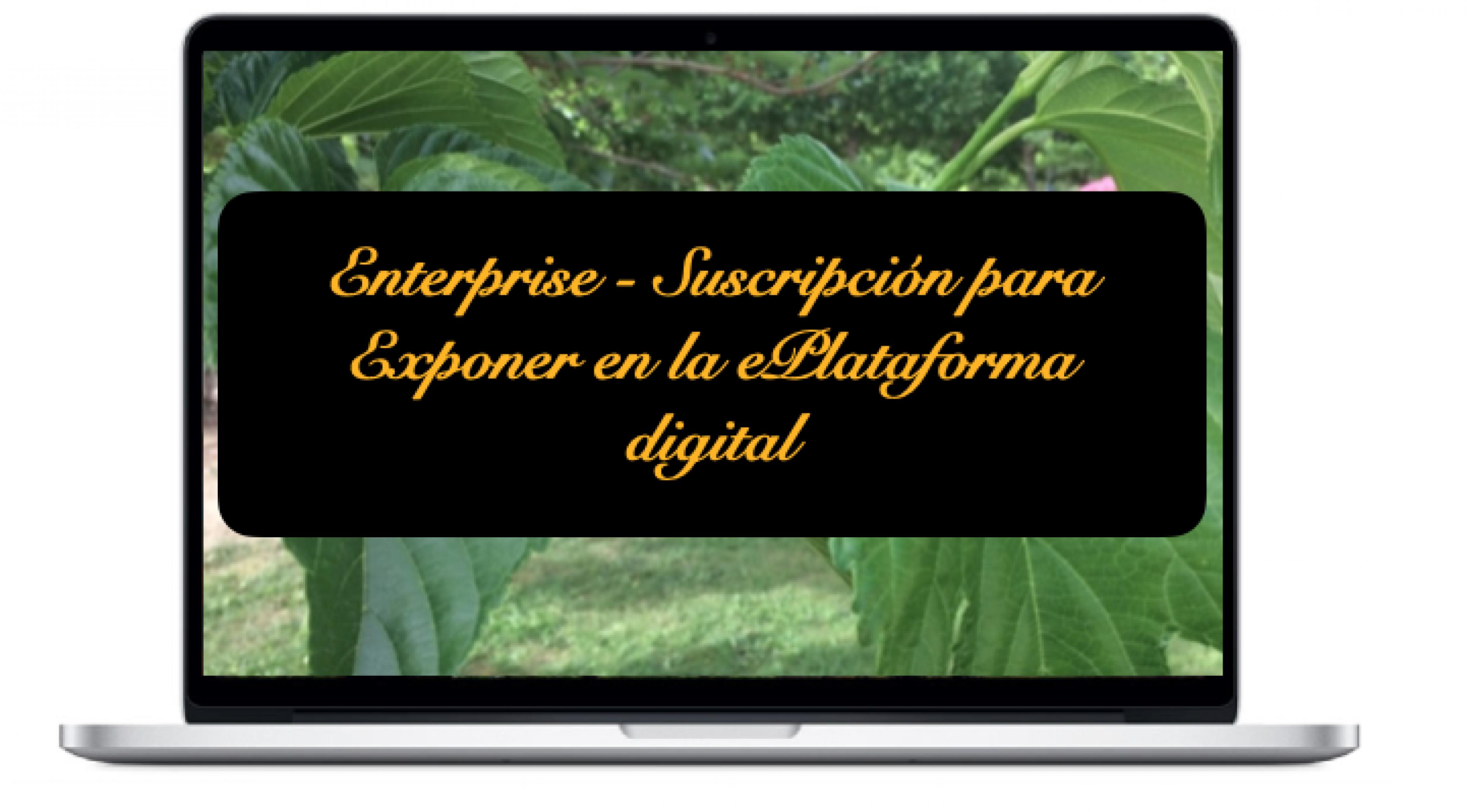 enterprise-suscripcion-para-exponer-en-la-eplataforma-digital