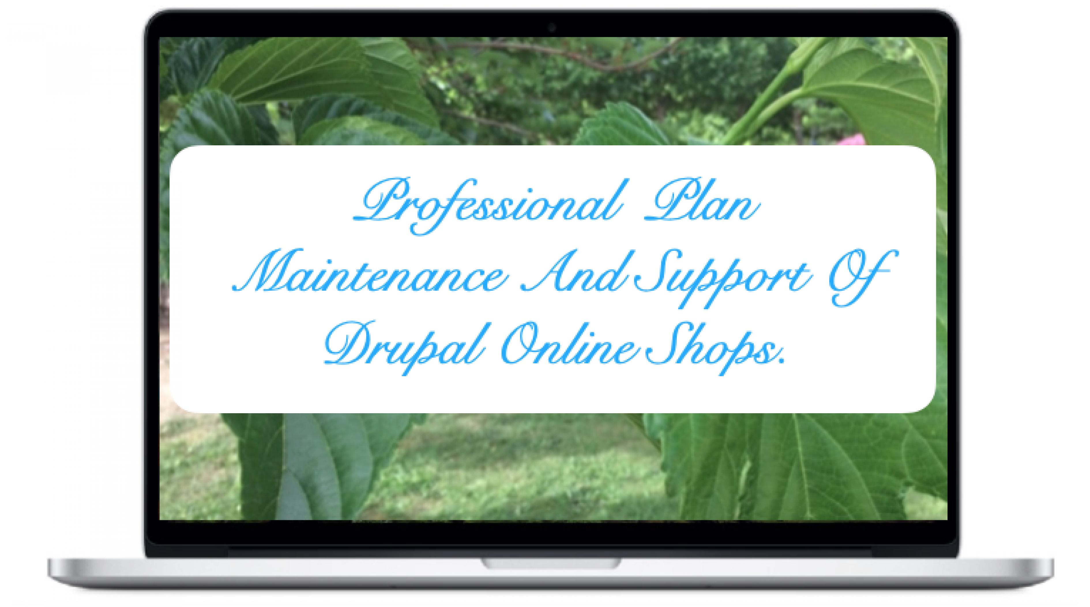 professional-maintenance-and-support-drupal-online-shops