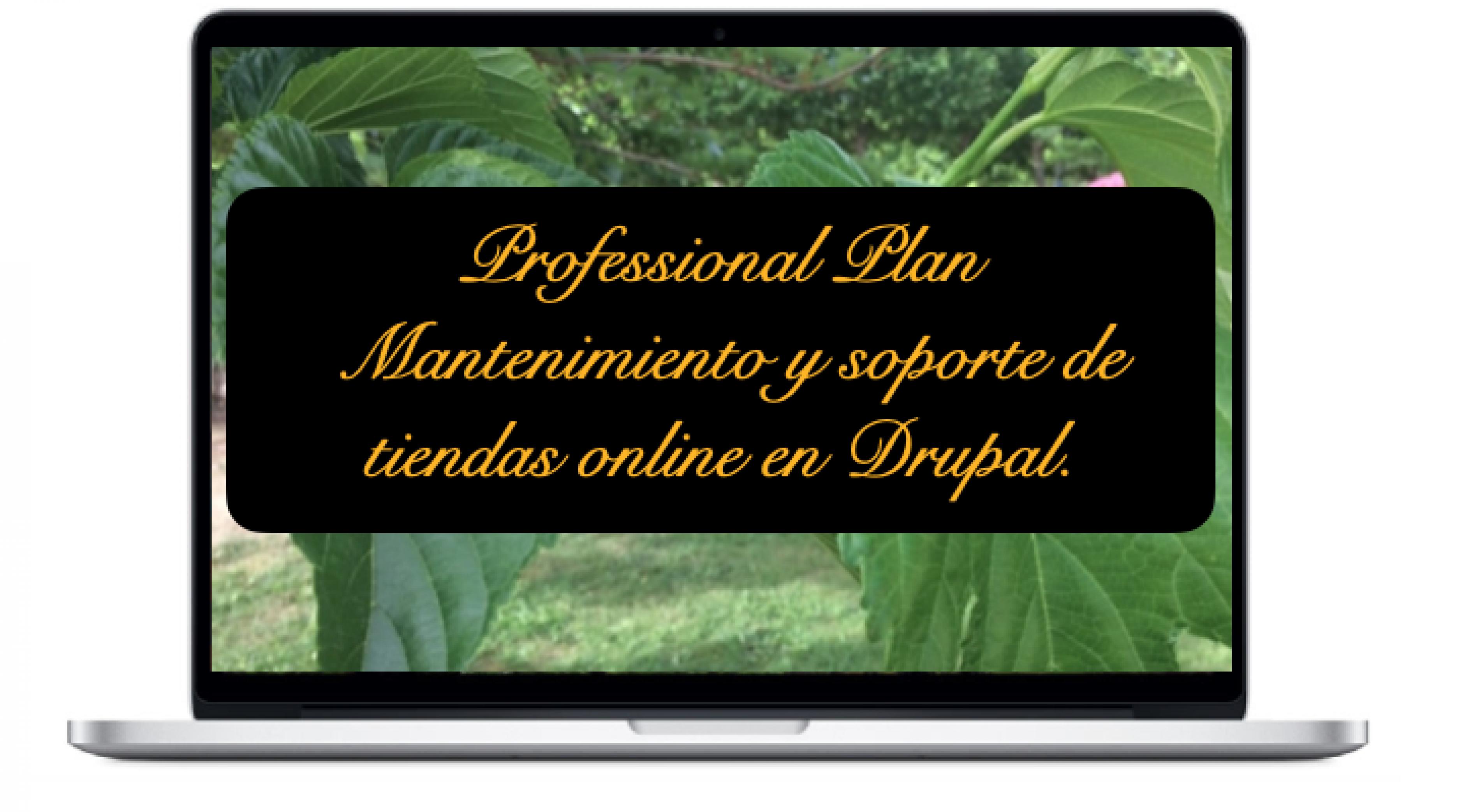professional-mantenimiento-y-soporte-de-tiendas-online-en-drupal