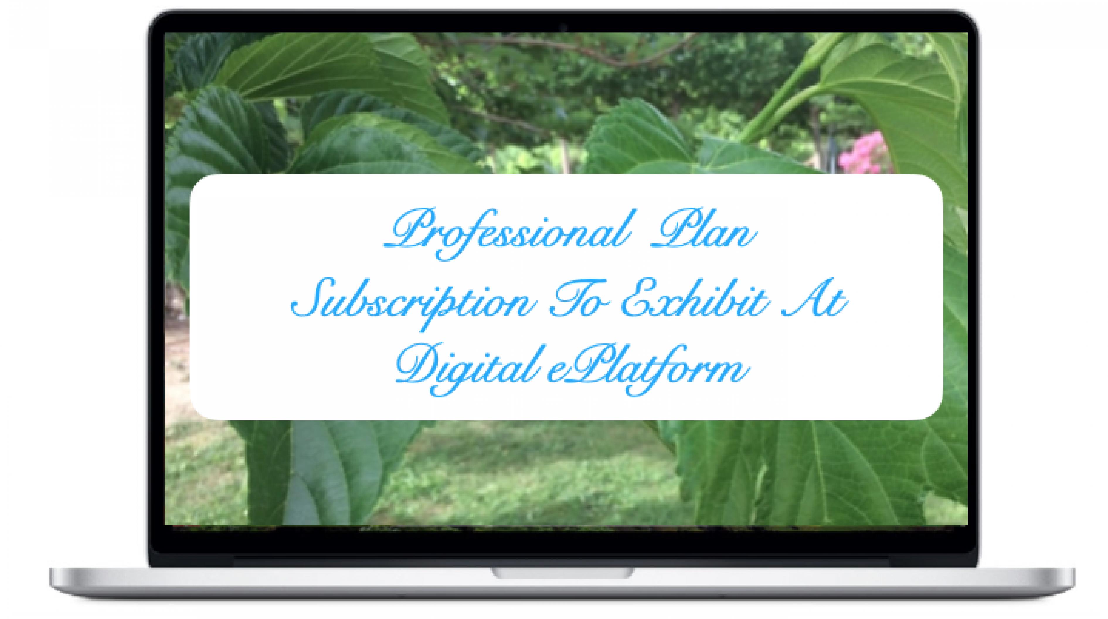 professional-plan-subscription-plan-to-exhibit-at-digital-eplatform_0
